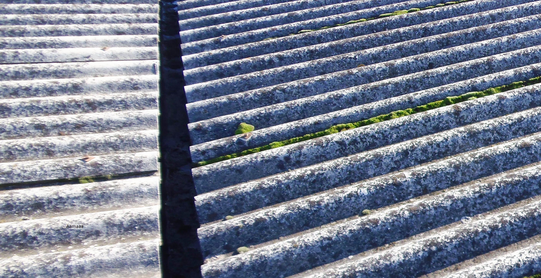 tetti semi uniti smaltimento amianto