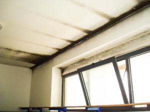 muffa soffitto smaltimento amianto